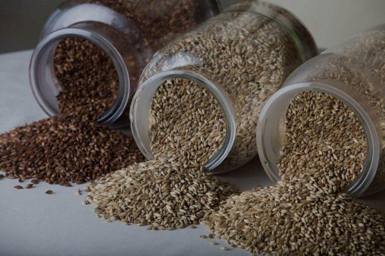 malto birra vasetti di cereali