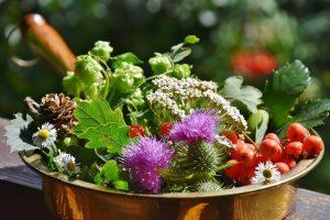 ciotola di luppolo con fiori